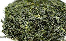 宇治茶新茶