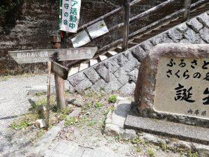 桜の園の入口