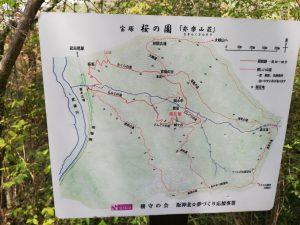桜の園の地図看板